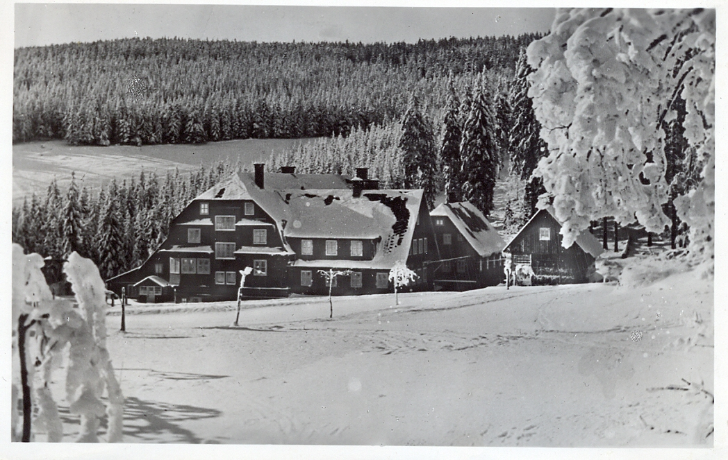 Hotel Šerlišský mlýn - Historie